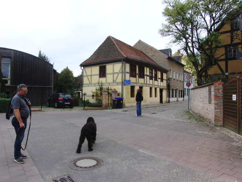 berlin-brandenburg-216