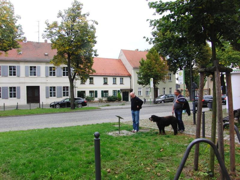 berlin-brandenburg-217